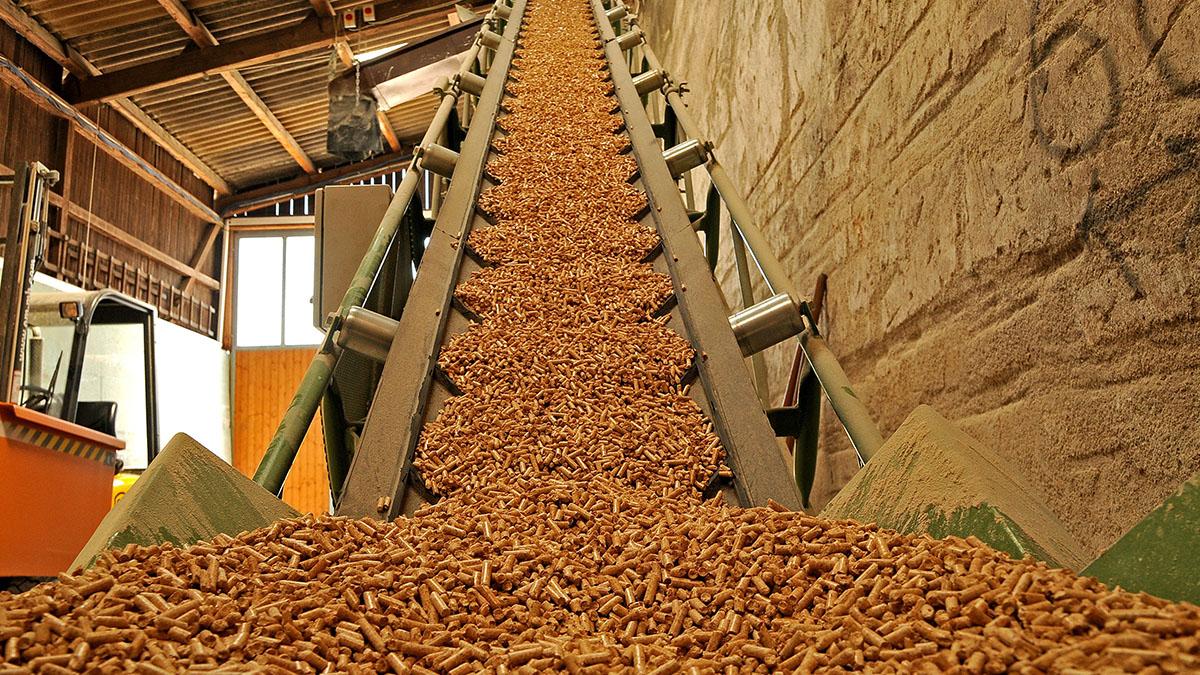 Hướng dẫn thủ tục xuất khẩu viên nén gỗ mùn cưa wood pellet